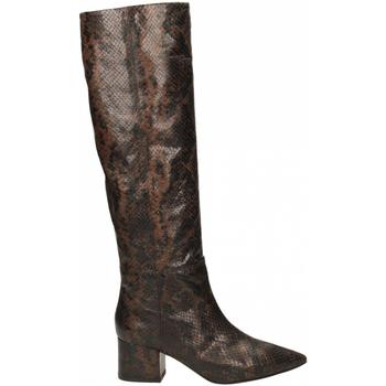 Čevlji  Ženske Mestni škornji    Giampaolo Viozzi TANZANIA marrone