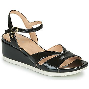 Čevlji  Ženske Sandali & Odprti čevlji Geox D ISCHIA Črna