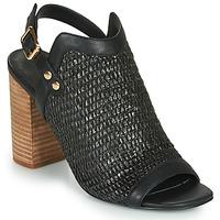 Čevlji  Ženske Sandali & Odprti čevlji Ravel CLIFTON Črna