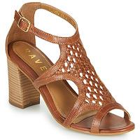 Čevlji  Ženske Sandali & Odprti čevlji Ravel COREEN Kamel