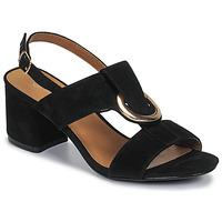 Čevlji  Ženske Sandali & Odprti čevlji Moony Mood MANY Črna
