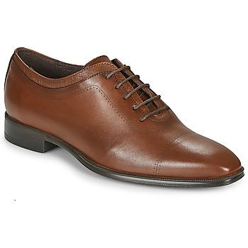 Čevlji  Moški Čevlji Richelieu Carlington MINEA Cognac