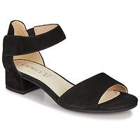 Čevlji  Ženske Sandali & Odprti čevlji Caprice BESSINA Črna