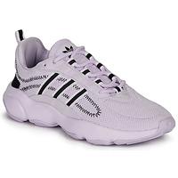 Čevlji  Ženske Nizke superge adidas Originals HAIWEE W Vijolična