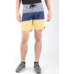 Oblačila Moški Kratke hlače & Bermuda DC Shoes DC SEDYBS03069-BYB0 Multicolor