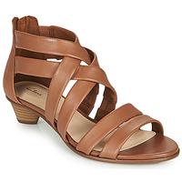 Čevlji  Ženske Sandali & Odprti čevlji Clarks MENA SILK Kamel