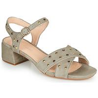 Čevlji  Ženske Sandali & Odprti čevlji Clarks SHEER35 STRAP Taupe / Clou
