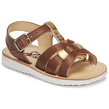 Čevlji  Deklice Sandali & Odprti čevlji Citrouille et Compagnie MINOTTE Kostanjeva / Pozlačena