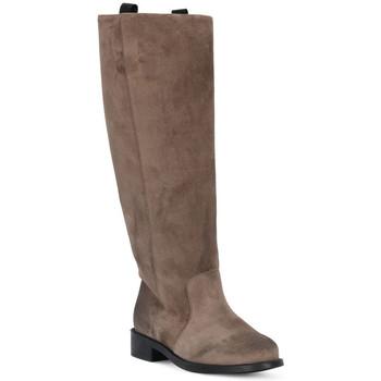 Čevlji  Ženske Mestni škornji    Frau WAXY VISONE Marrone