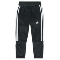 Oblačila Dečki Spodnji deli trenirke  adidas Performance DANIELA Črna