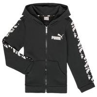 Oblačila Dečki Puloverji Puma AMPLI HOOD JKT Črna