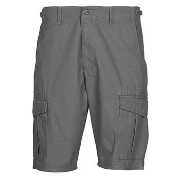 Oblačila Moški Kratke hlače & Bermuda Lee CARGO SHORT FATIGUE Steel / Siva