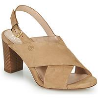 Čevlji  Ženske Sandali & Odprti čevlji Betty London MARIPOL Bež