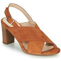 Čevlji  Ženske Sandali & Odprti čevlji Betty London MARIPOL Cognac