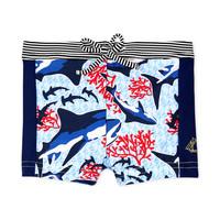 Oblačila Dečki Kopalke / Kopalne hlače Petit Bateau FEUILLAGE Večbarvna