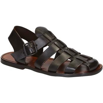 Čevlji  Moški Sandali & Odprti čevlji Gianluca - L'artigiano Del Cuoio 502 U MORO CUOIO Testa di Moro