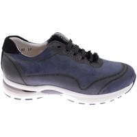 Čevlji  Ženske Pohodništvo Calzaturificio Loren CLORA1068bl blu