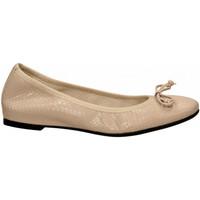 Čevlji  Ženske Balerinke Frau WHIPS nude