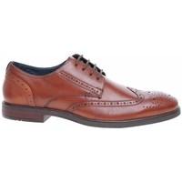 Čevlji  Moški Čevlji Derby Josef Seibel 42205786370 Rjava