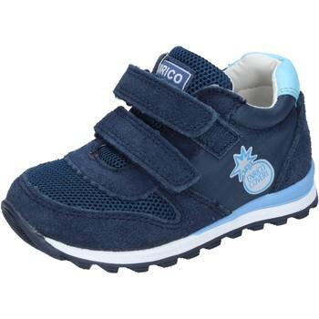 Čevlji  Dečki Nizke superge Enrico Coveri Superge BN683 Modra