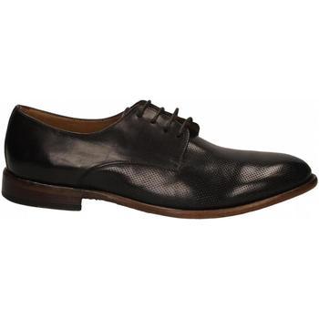 Čevlji  Moški Čevlji Derby Calpierre ANICOL cioccolato