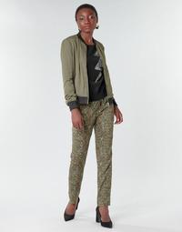 Oblačila Ženske Lahkotne hlače & Harem hlače Ikks BR22005 Kaki