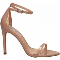 Čevlji  Ženske Sandali & Odprti čevlji Steve Madden ABBY PATENT dark-blush