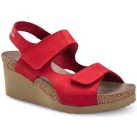 Čevlji  Ženske Sandali & Odprti čevlji Mephisto MEPHTINYro rosso