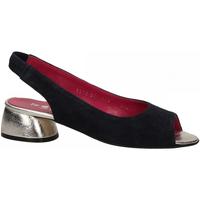 Čevlji  Ženske Sandali & Odprti čevlji Le Babe VALENTINA blu
