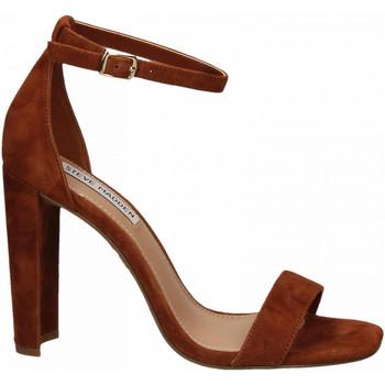 Čevlji  Ženske Sandali & Odprti čevlji Steve Madden FRANKY SUEDE chestnut