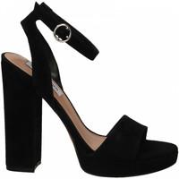 Čevlji  Ženske Sandali & Odprti čevlji Steve Madden GESTURE SUEDE black