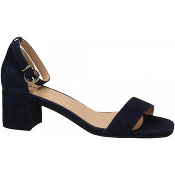 Čevlji  Ženske Sandali & Odprti čevlji Frau CAMOSCIO navy