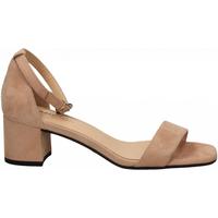 Čevlji  Ženske Sandali & Odprti čevlji Frau CAMOSCIO nude