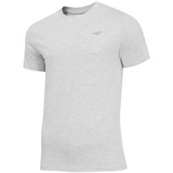 Oblačila Moški Majice s kratkimi rokavi 4F TSM003 Siva
