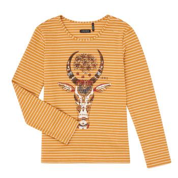 Oblačila Deklice Majice z dolgimi rokavi Ikks XR10102 Kostanjeva