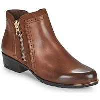 Čevlji  Ženske Polškornji Caprice 25403-313 Cognac