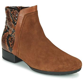 Čevlji  Ženske Gležnjarji Gabor 5271235 Kamel