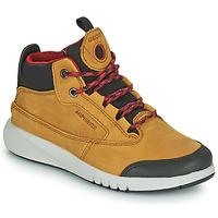 Čevlji  Dečki Polškornji Geox AERANTER ABX Kamel