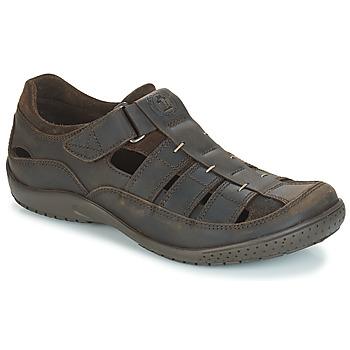 Čevlji  Moški Sandali & Odprti čevlji Panama Jack MERIDIAN Kostanjeva