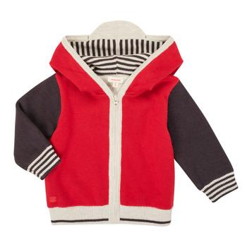 Oblačila Dečki Telovniki & Jope Catimini CR18000-38 Večbarvna