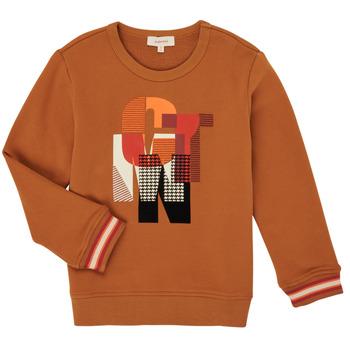 Oblačila Dečki Puloverji Catimini CR15024-63-C Kostanjeva