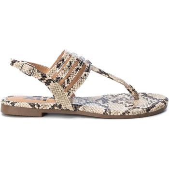 Čevlji  Ženske Japonke Xti 49577 CAMEL Marrón