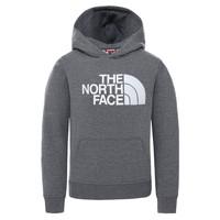 Oblačila Otroci Puloverji The North Face DREW PEAK HOODIE Siva