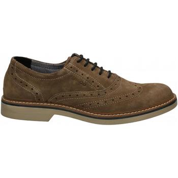 Čevlji  Moški Čevlji Derby IgI&CO UFP 51050 fango