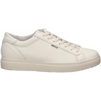 Čevlji  Moški Nizke superge IgI&CO USH 51387 bianco