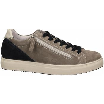 Čevlji  Moški Nizke superge IgI&CO USH 51389 grigio