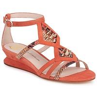 Čevlji  Ženske Sandali & Odprti čevlji House of Harlow 1960 CELINEY Koralna