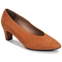 Čevlji  Ženske Salonarji Wonders I8401-ANTE-CAMEL Kamel