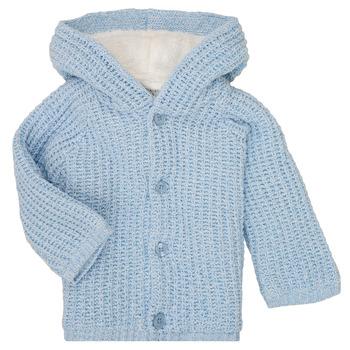 Oblačila Dečki Plašči Carrément Beau Y96053 Modra