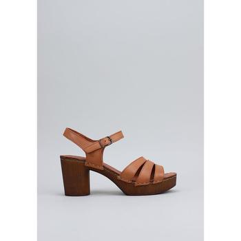 Čevlji  Ženske Sandali & Odprti čevlji Sandra Fontan  Bež